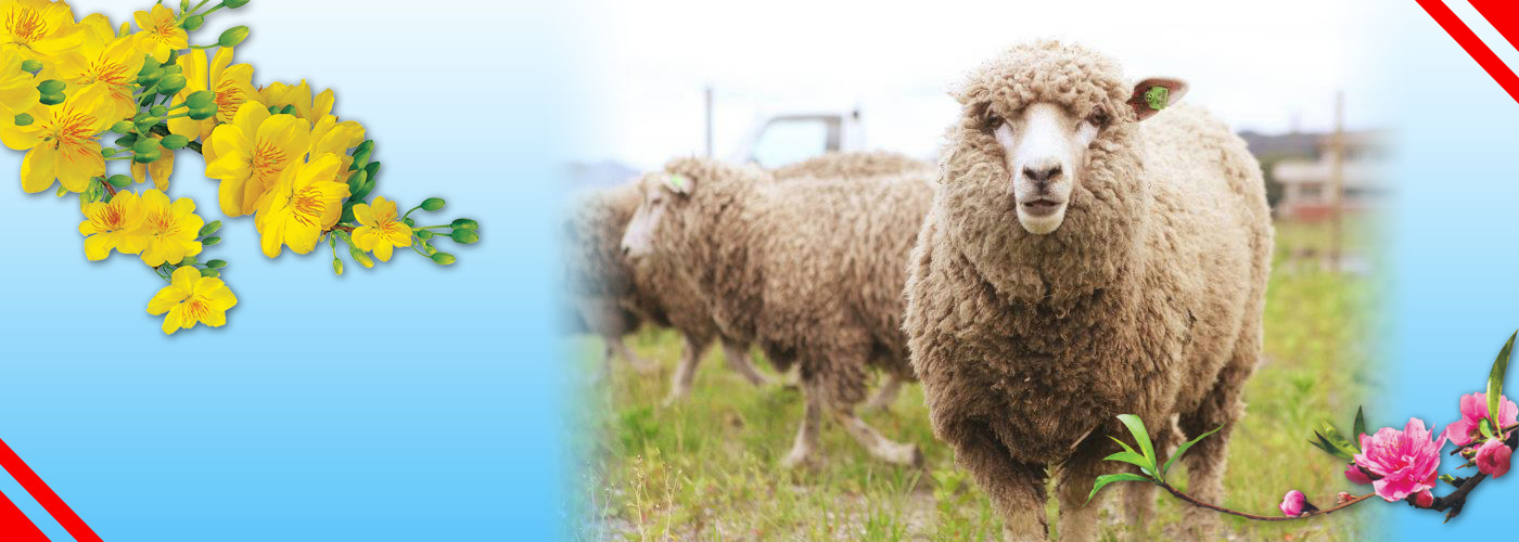 明けましておめでとう! 羊の年!クレジット: https://www.re-green.jp/